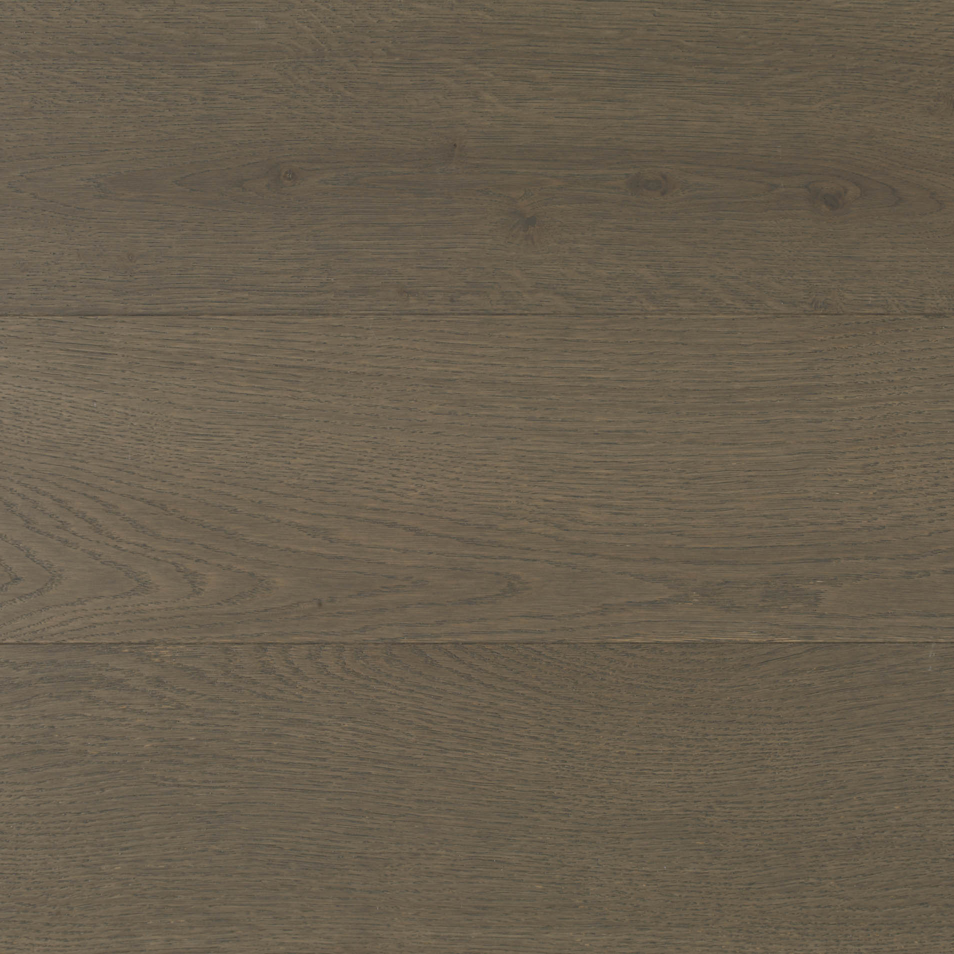 rovere essential cloud